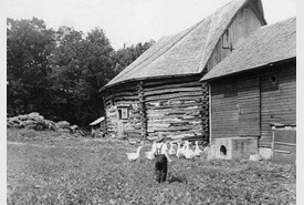 Bonnie Age 4 - Eight Sided Barn